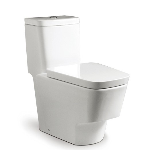 toilets-one-piece-toilets-verona-one-piece-wc-with-dual-outlet-p-trap-or-s-trap-305-mm-rs34945j000-385-710-730.jpg