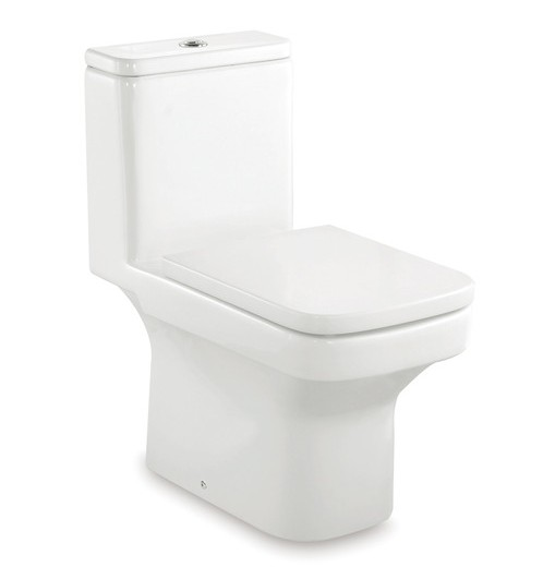 toilets-one-piece-toilets-dama-one-piece-wc-with-dual-outlet-p-trap-or-s-trap-305-mm-rs349787000-368-675-765.jpg
