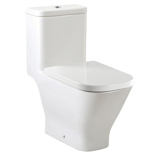 toilets-one-piece-toilets-the-gap-one-piece-wc-with-dual-outlet-p-trap-or-s-trap-305-mm-rs349477000-360-675-760.jpg